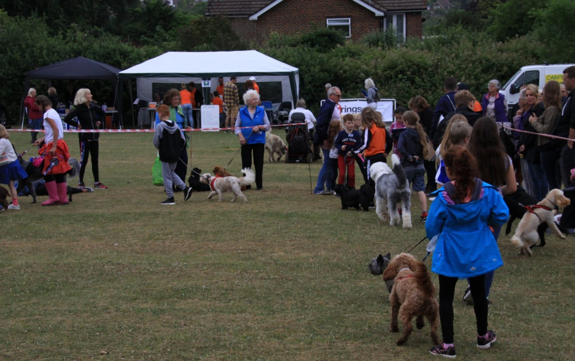 Findon Valley FUN Dog Show