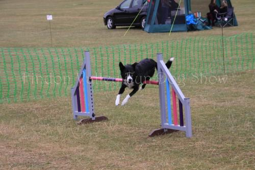 findon_valley_dog_show_2017 (57)